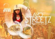 Various_Artists_Ayo_Streetz_Vol_1_hosted_By_Ayok-front-large